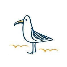 Seagull Gallery.jpg