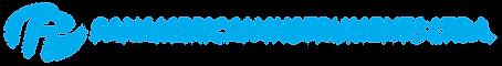 Logo Panamerican Instruments Ltda.