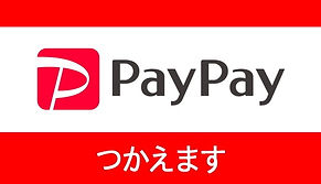 PayPay_edited.jpg
