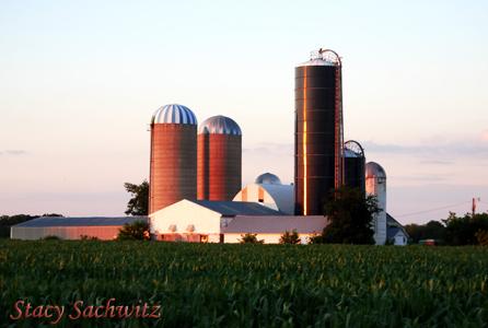 Farm01.jpg