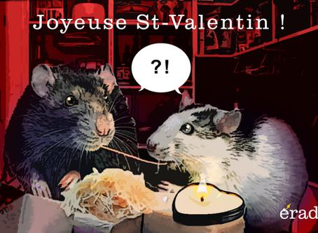 Joyeuse St-Valentin !