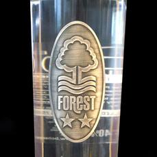 forest_P_close_2048x.jpg