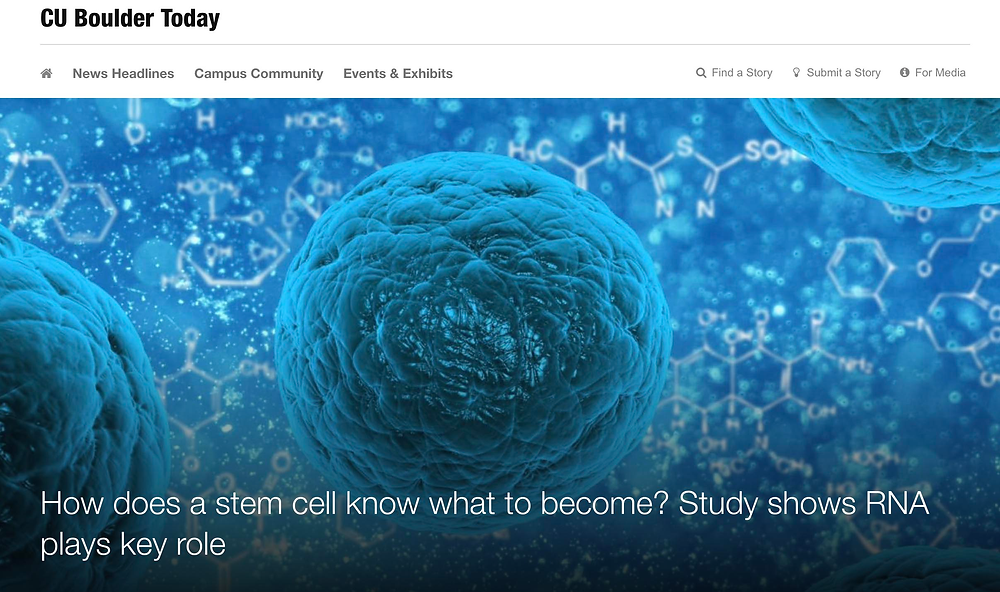 picture of john rinn and tom cech lab news article