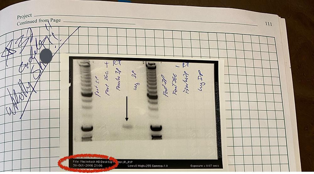 photo of john rinn lab notebook