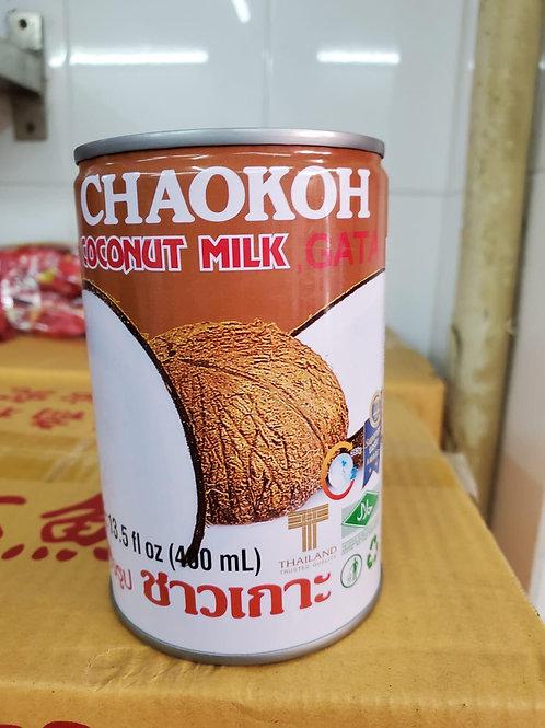 罐裝椰汁  (400ml)