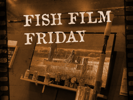 Fish Film Friday