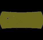 Web-Logo-SA.png