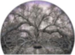 5Gateway_web.jpg