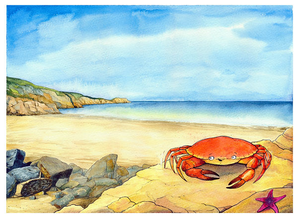 Crab Colour Artwork.jpg
