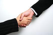 Professional Handshake