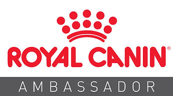 Ambassador Logo.jpg