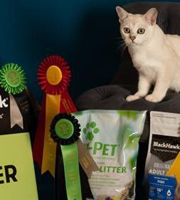 Supreme Exhbit Miamber Im It And A Bit Adelaide Cat Club 2018.jpg
