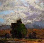 Baylands Storm