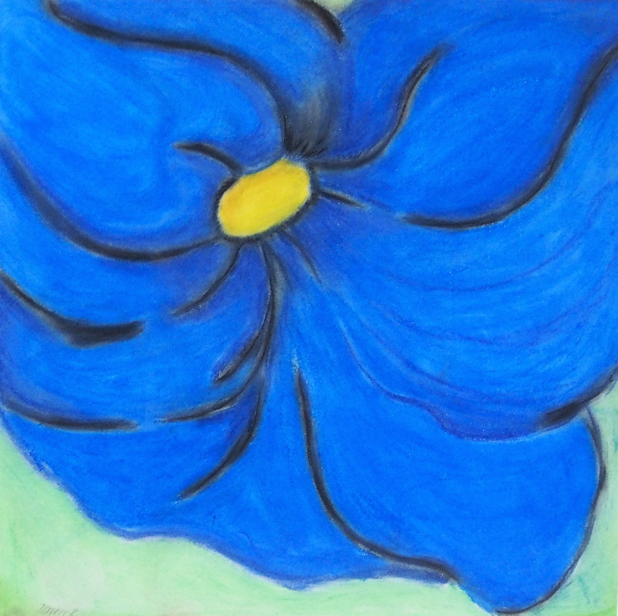 Terrecc Richardson - Blue Flower