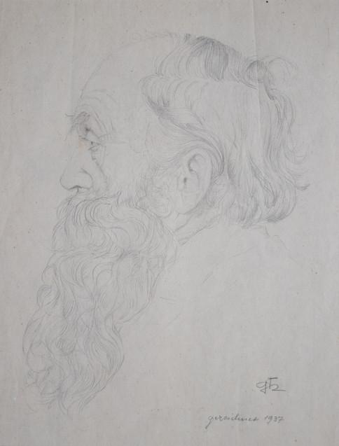 Skizze - Der lockige Bart