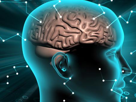 Como suas palavras literalmente reestruturam seu cérebro
