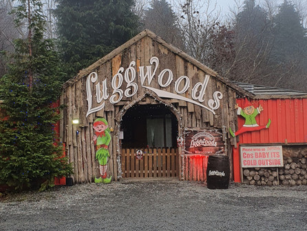 Santa's Enchanted Forest at Luggwoods