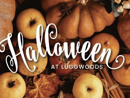 Luggwoods Hooky Spooky Halloween Experience is Back!