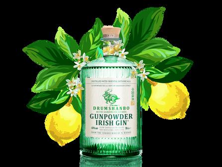 Drumshanbo Gunpowder Irish Gin launch 'Sardinian Citrus'