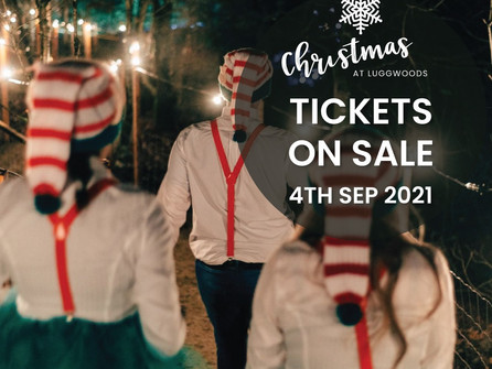 The Christmas Experience at Luggwoods is back!
