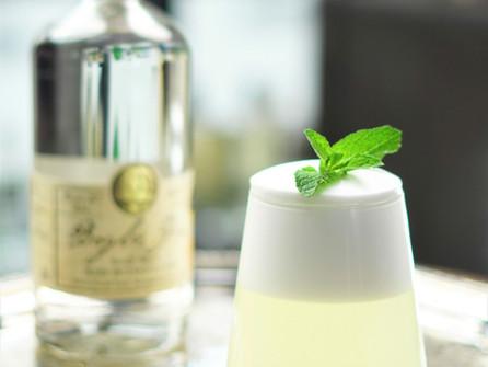 Boyles' Gin Fizz | Cocktail Recipe