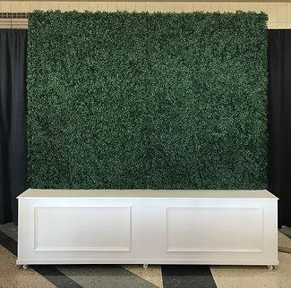 Boxed 8x8 Hedge Wall.jpg