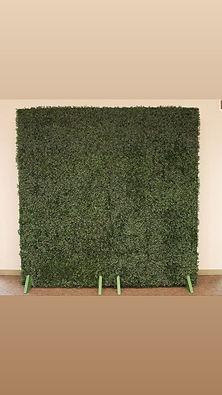 Plain 8x8 Hedge Wall.jpg