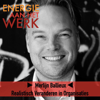 Podcast | Realistisch Veranderen in Organisaties