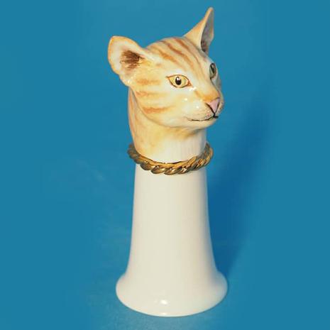 Avalon Cat