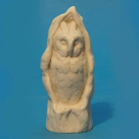 Copeland Owl in tree