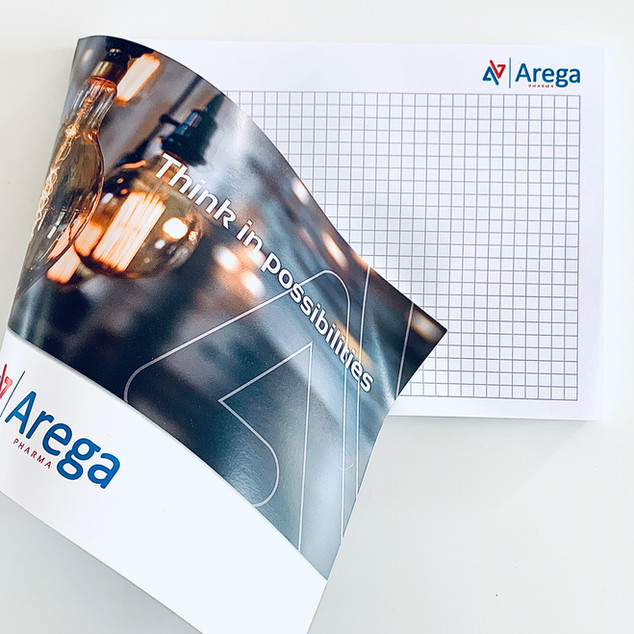 Arega_3.jpg