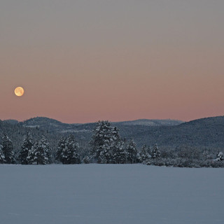 A064 Winter Moon Greeting Card