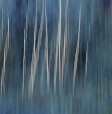 Aspen Blue