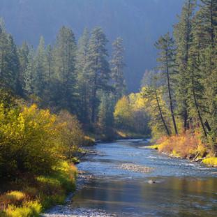 A115 A River Runs Through Autumn Greeting Card