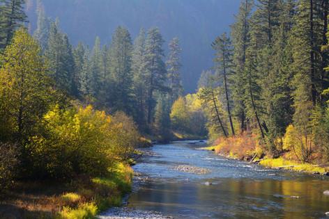 A River Runs Through Autumn