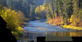 Montana- A River Runs Thru Autumn