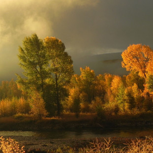 A125 Autumn on the Gros Ventre Greeting Card