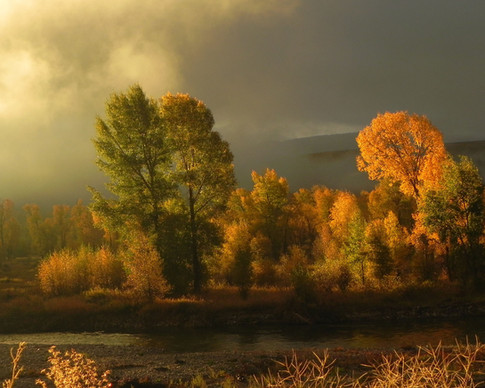 Autumn Morning on the Gros Ventre