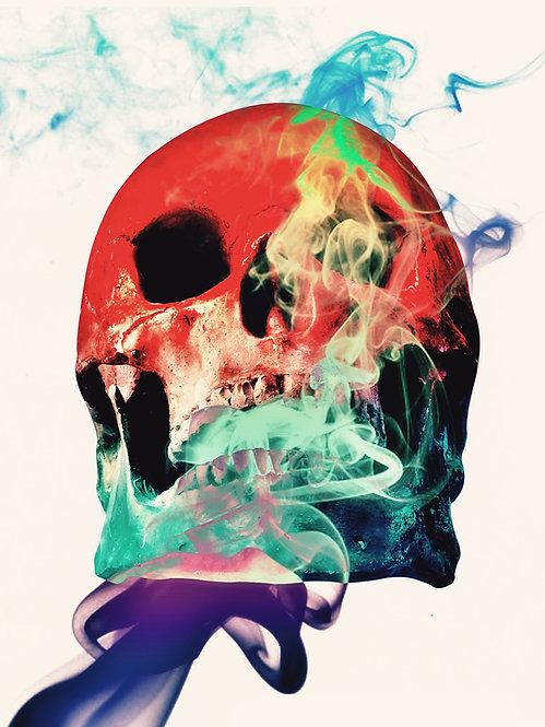 Scubetta Skull Series Eight