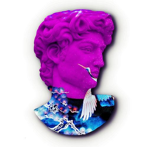 Pink David - Scubetta