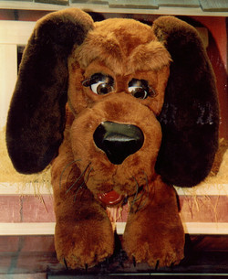 Andreson Dog
