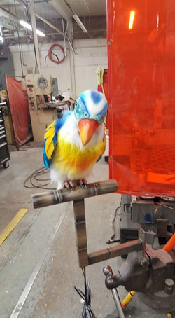 Stews Wishing Well Parrot