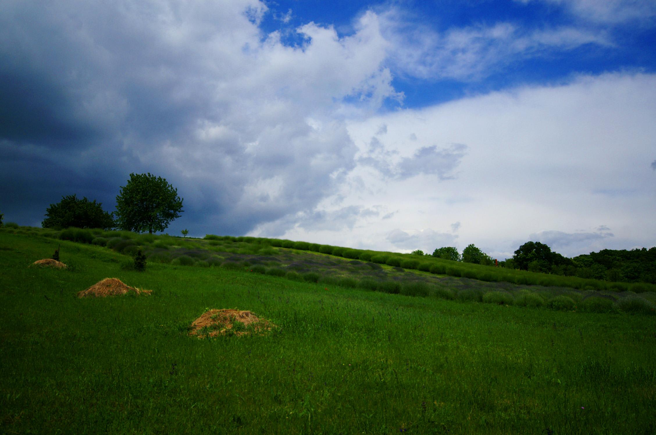 Balatonakalitól Felsődörgicse felé
