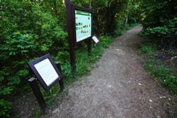 Kis-Sváb-hegyi tanösvény