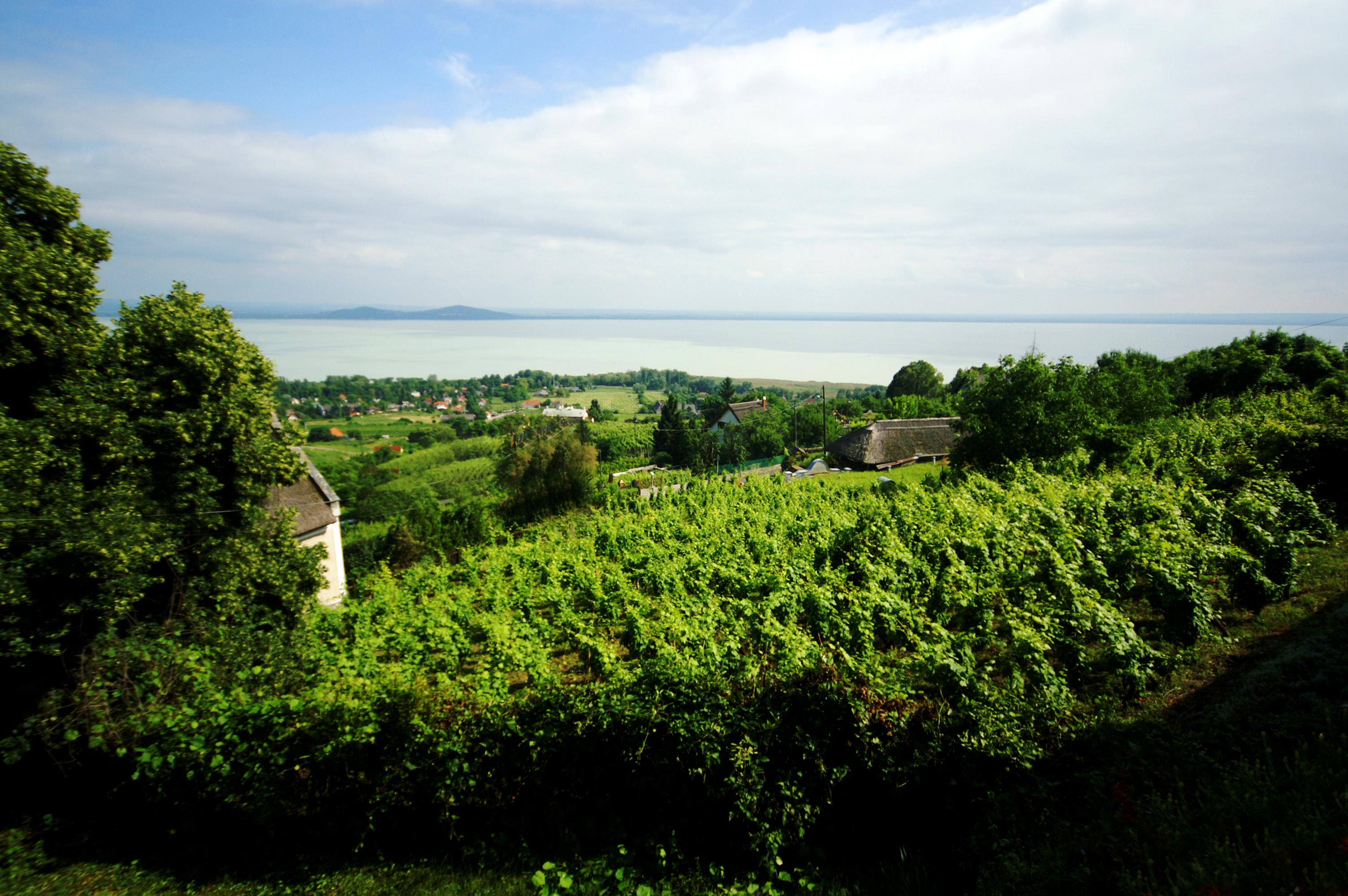 Kisfaludy-ház teraszáról a kilátás