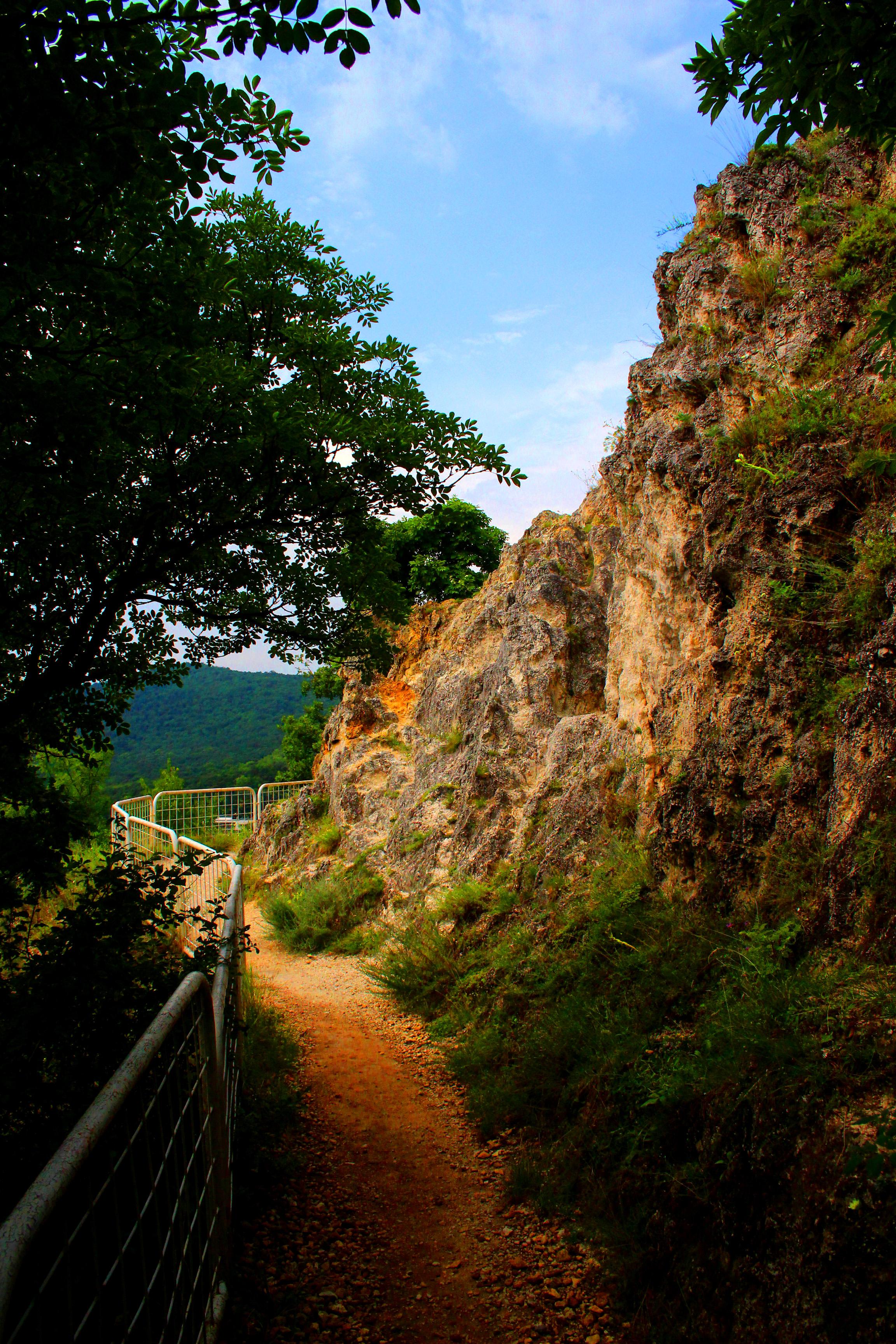 Apáthy-szikla, Buda
