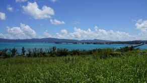 本日は沖縄フルーツランドから20分で行ける古宇利島の風景をお届けします。外出を控えなければいけない時期なので、皆様の気分が少しでも変わるといいな。名護市はテーマパークや自然に囲まれた素敵な地域です。