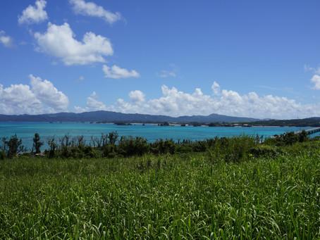 素敵な景色で癒されますね。ホテルから古宇利島まで約20分です。