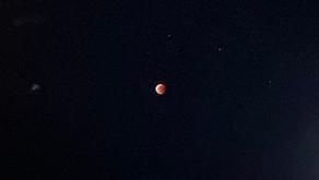 2021年5月26日皆既月食が起こりました。今回は、スーパームーンも重なり素晴らしい天体ショーとなりました。沖縄フルーツランドがある名護市でもきれいに見る事ができました。次回は約20年後、楽しみですね