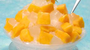 沖縄フルーツランドの大人気スイーツマンゴかき氷、ロングセラーの商品で多くの皆様に愛されている商品です。夏に向けフルーツ達はどんどん成長してます。皆様にお届けできる日が楽しみです。名護市のテーマパーク